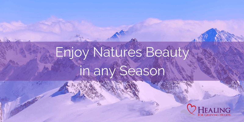 Enjoy Natures Beauty in any Season. - HealingForGrievingHearts.com